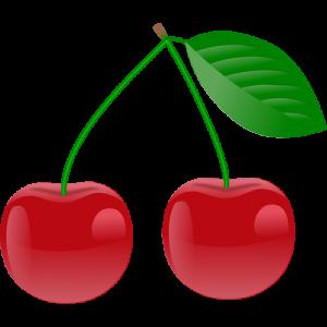 Třída Třešničky